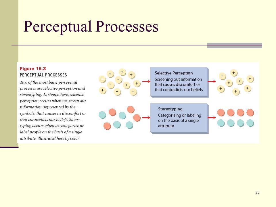 23 Perceptual Processes