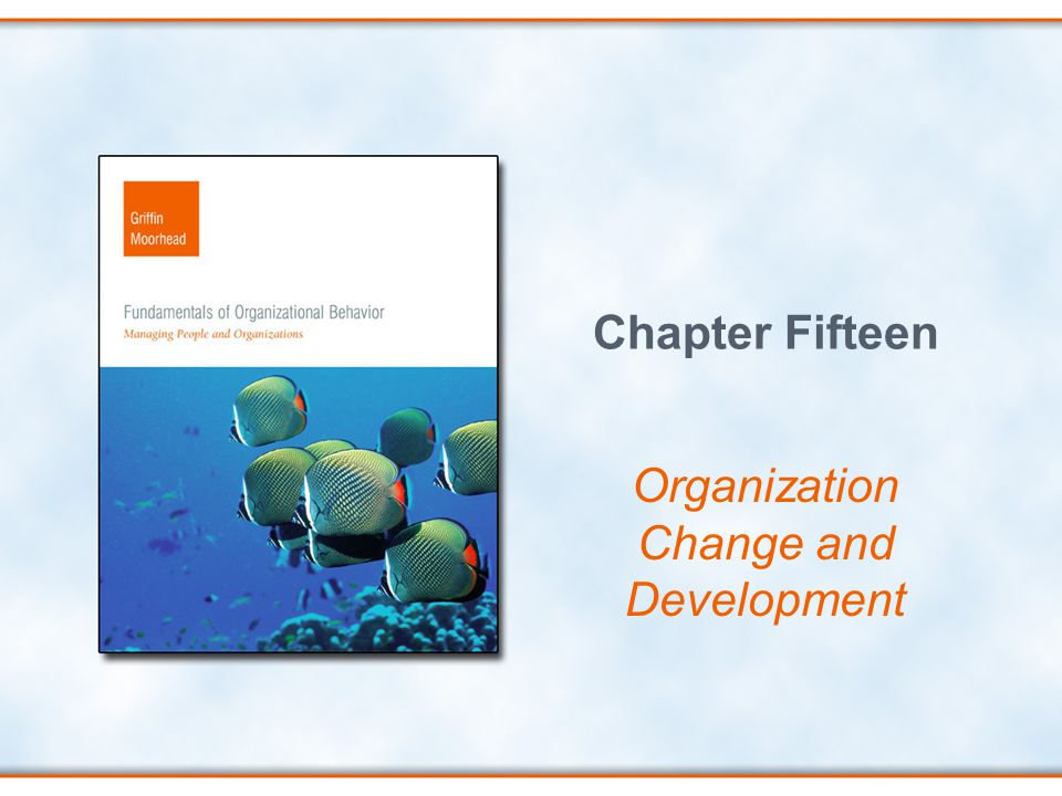Chapter Fifteen Organization Change and Development