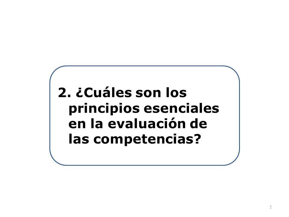 PRINCIPIO 1: La evaluación de las competencias es un proceso metacognitivo PRINCIPIO 2: La evaluación se basa en criterios pertinentes al desempeño en el contexto PRINCIPIO 3: La evaluación busca articular lo cualitativo y lo cuantitativo PRINCIPIO 4: La evaluación se centra en los aspectos esenciales del aprendizaje PRINCIPIO 4: La retroalimentación motiva al mejoramiento continuo PRINCIPIO 5: La evaluación es intersubjetiva, dialógica y tiene control de calidad 6