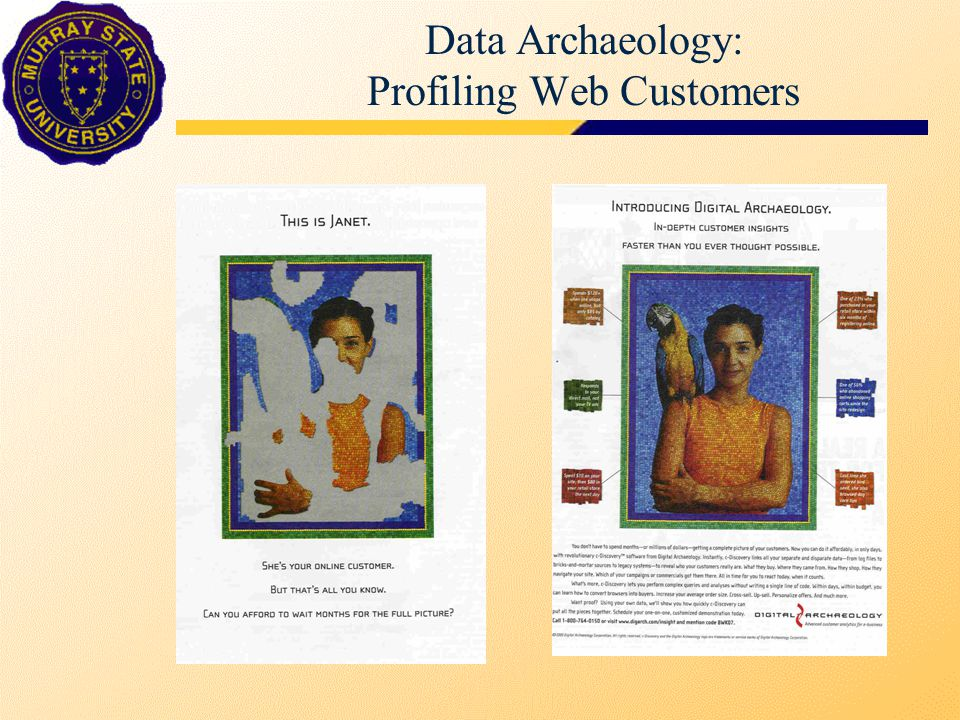Data Archaeology: Profiling Web Customers