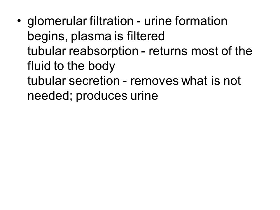glomerular filtration - urine formation begins, plasma is filtered tubular reabsorption - returns most of the fluid to the body tubular secretion - removes what is not needed; produces urine