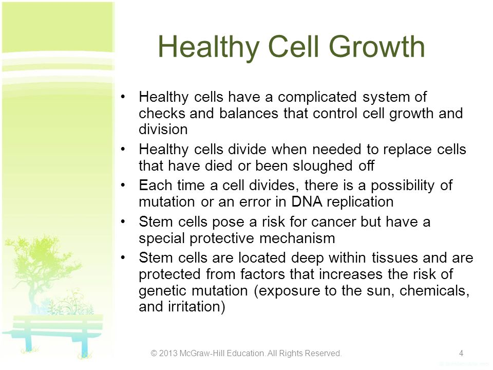 Healthy Cell Growth Healthy cells have a complicated system of checks and balances that control cell growth and division Healthy cells divide when nee