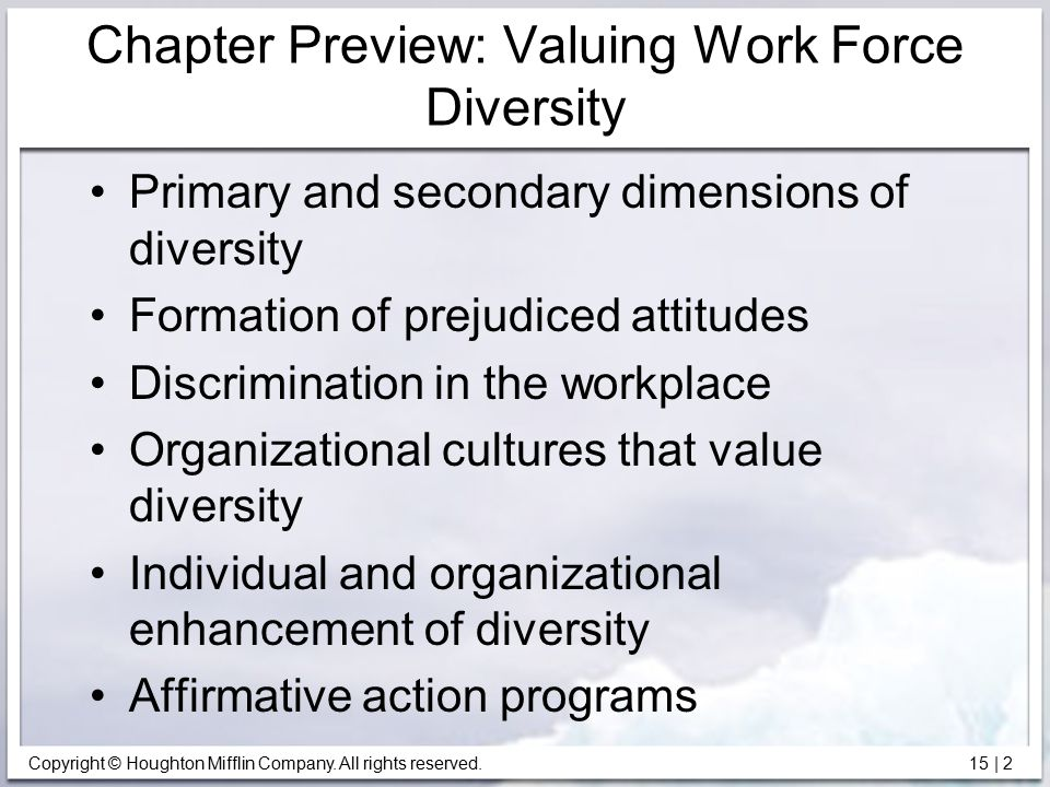 Copyright © Houghton Mifflin Company. All rights reserved. 15   2 Chapter Preview: Valuing Work Force Diversity Primary and secondary dimensions of di
