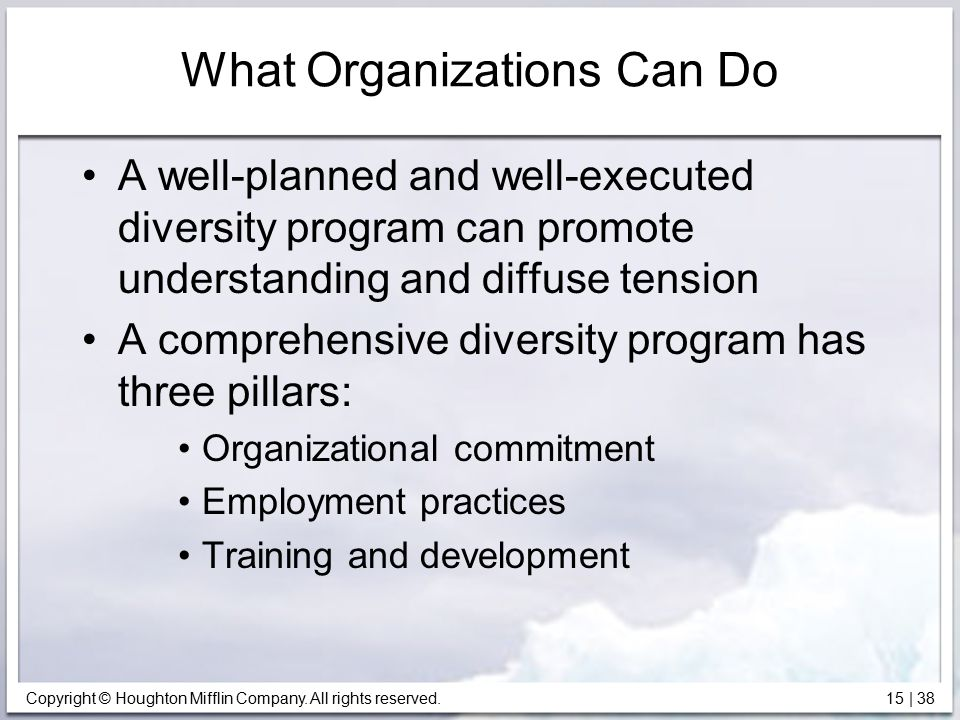 Copyright © Houghton Mifflin Company. All rights reserved. 15   38 What Organizations Can Do A well-planned and well-executed diversity program can pr