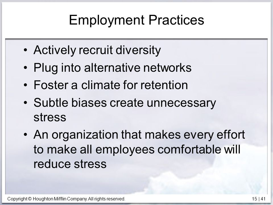 Copyright © Houghton Mifflin Company. All rights reserved. 15   41 Employment Practices Actively recruit diversity Plug into alternative networks Fost