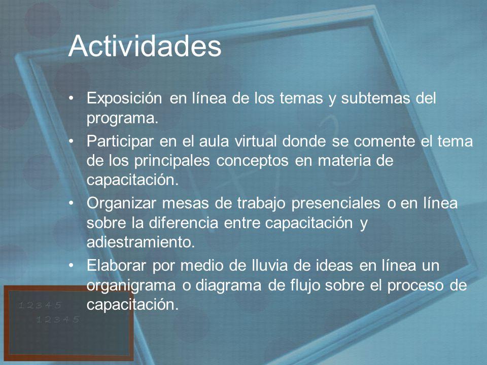 Actividades Exposición en línea de los temas y subtemas del programa.