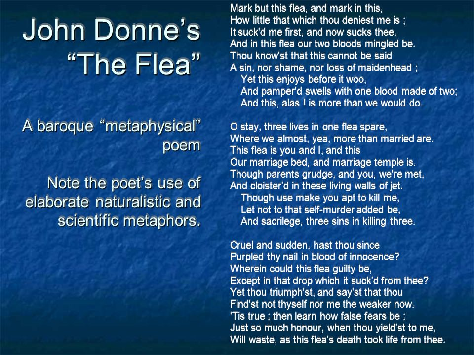 John Donne's The Flea A baroque metaphysical poem Note the poet's use of elaborate naturalistic and scientific metaphors.