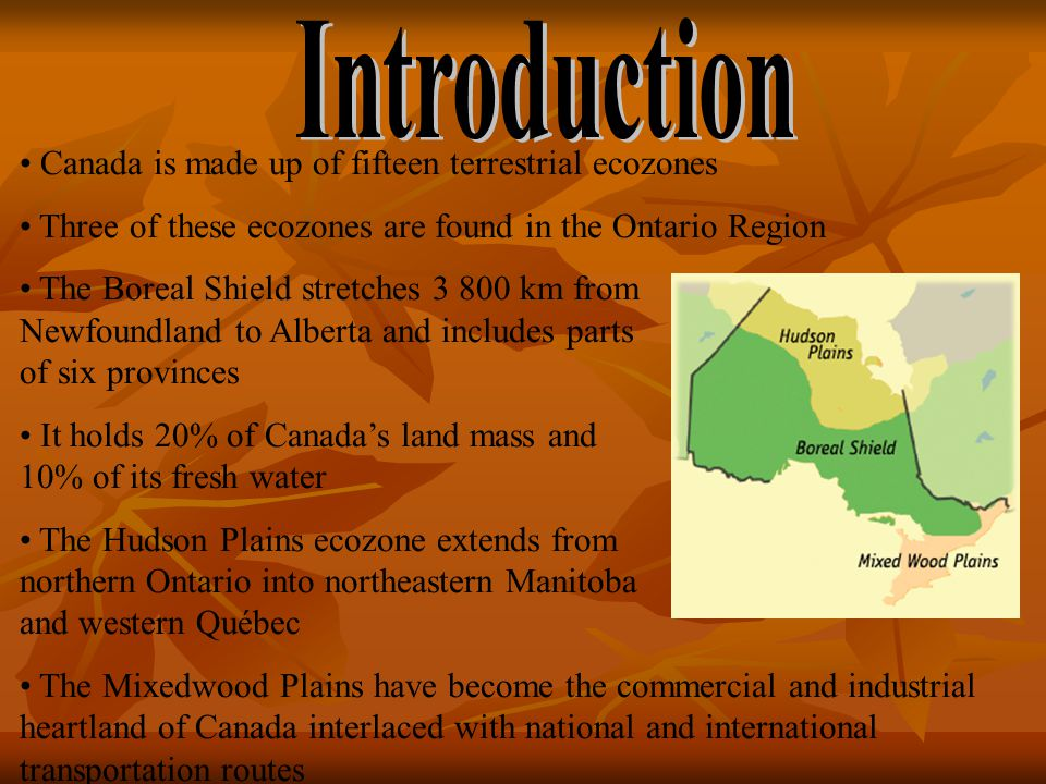 Canada is made up of fifteen terrestrial ecozones Three of these ecozones are found in the Ontario Region The Boreal Shield stretches 3 800 km from Newfoundland to Alberta and includes parts of six provinces It holds 20% of Canada's land mass and 10% of its fresh water The Hudson Plains ecozone extends from northern Ontario into northeastern Manitoba and western Québec The Mixedwood Plains have become the commercial and industrial heartland of Canada interlaced with national and international transportation routes