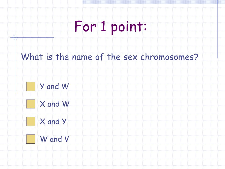 For 1 point: What is the name of the sex chromosomes X and Y X and W Y and W W and V