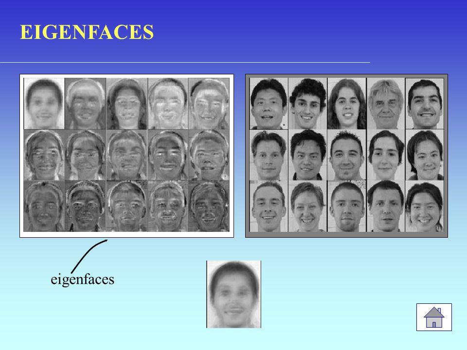 EIGENFACES eigenfaces