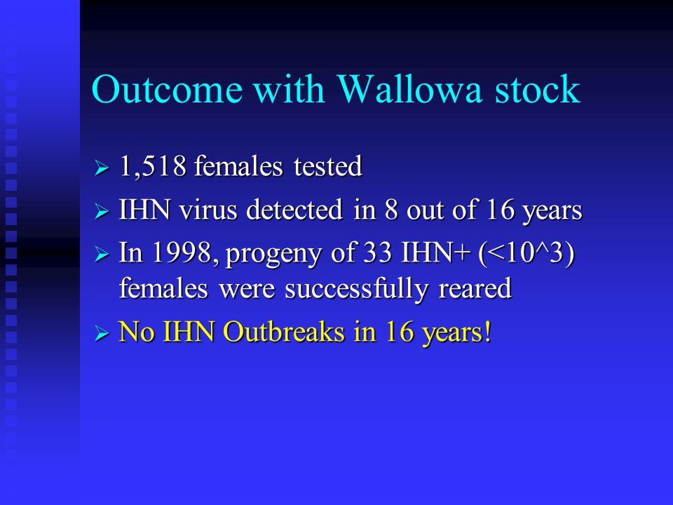 Outcome with Wallowa stock  1,518 females tested  IHN virus detected in 8 out of 16 years  In 1998, progeny of 33 IHN+ (<10^3) females were success