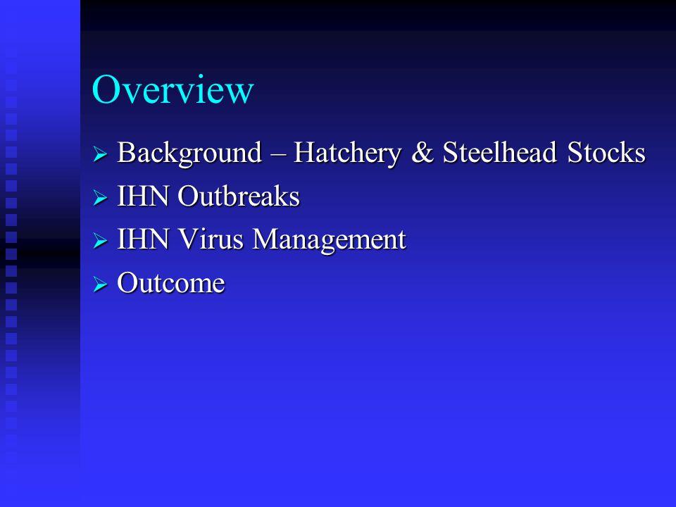 Overview  Background – Hatchery & Steelhead Stocks  IHN Outbreaks  IHN Virus Management  Outcome