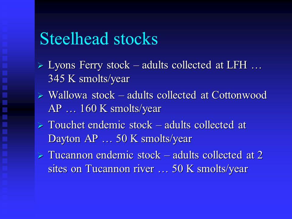 Steelhead stocks  Lyons Ferry stock – adults collected at LFH … 345 K smolts/year  Wallowa stock – adults collected at Cottonwood AP … 160 K smolts/