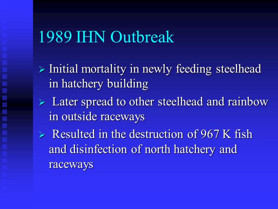 1989 IHN Outbreak  Initial mortality in newly feeding steelhead in hatchery building  Later spread to other steelhead and rainbow in outside raceway