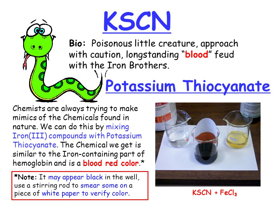 "KSCN Potassium Thiocyanate Bio: Poisonous little creature, approach with caution, longstanding ""blood"" feud with the Iron Brothers. *Note: It may appe"