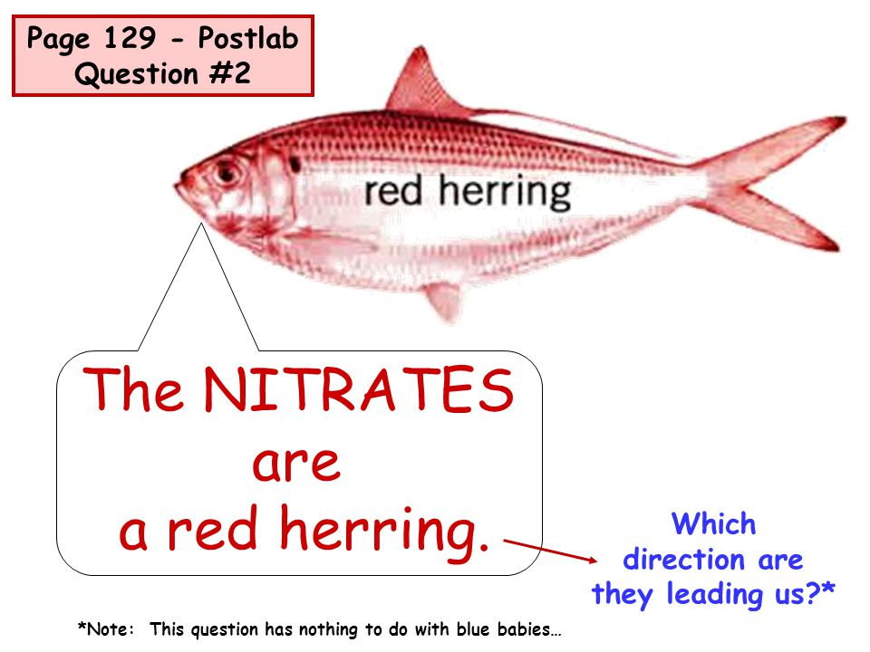The NITRATES are a red herring. Which direction are they leading us?* Page 129 - Postlab Question #2 *Note: This question has nothing to do with blue