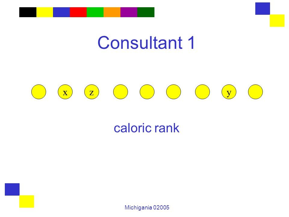 Michigania 02005 Consultant 1 caloric rank zxy