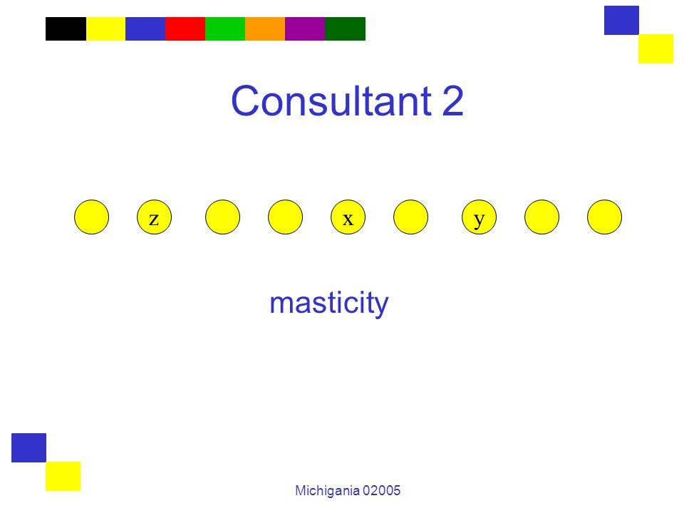 Michigania 02005 Consultant 2 masticity zxy