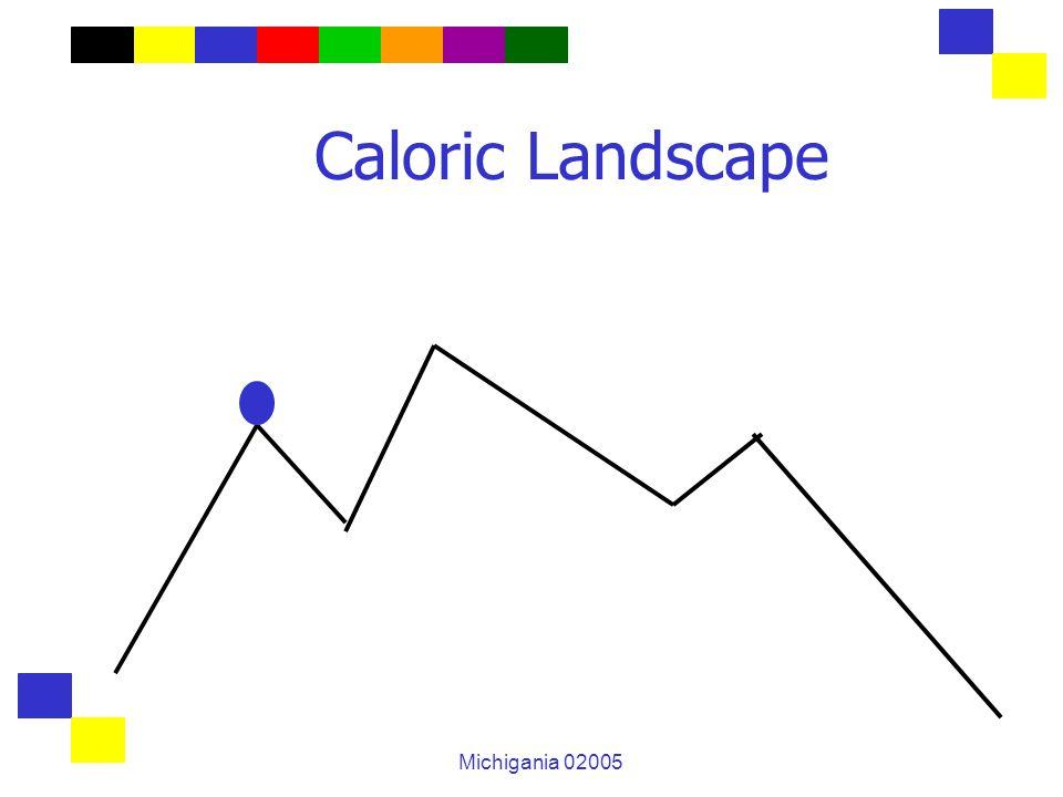 Michigania 02005 Caloric Landscape