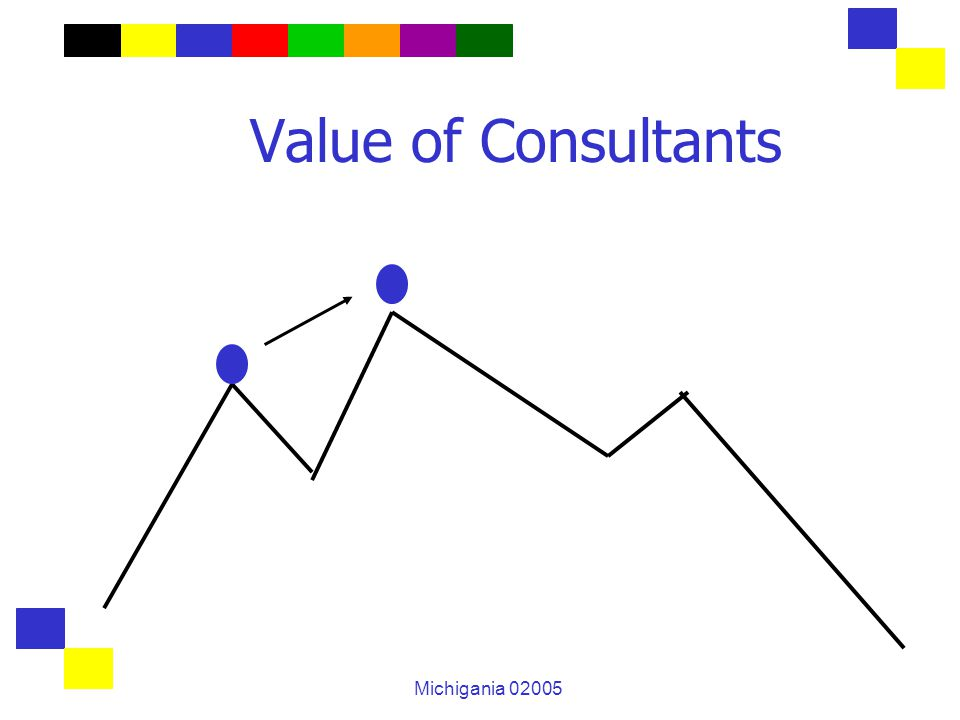 Michigania 02005 Value of Consultants
