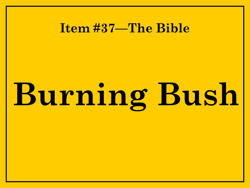 Item #37—The Bible Burning Bush