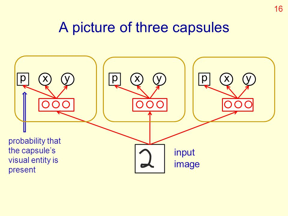 p xy p xy p xy input image probability that the capsule's visual entity is present A picture of three capsules 16