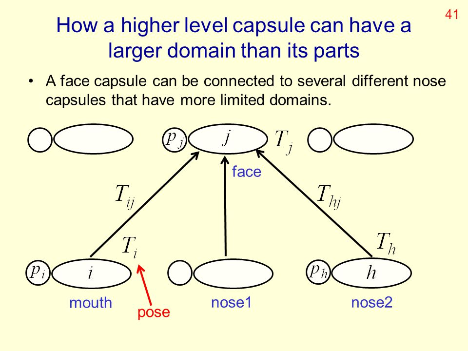 How a higher level capsule can have a larger domain than its parts A face capsule can be connected to several different nose capsules that have more l