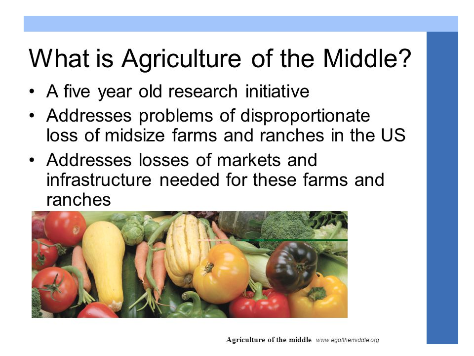 Agriculture of the middle www.agofthemiddle.org Why are we setting a new research agenda.