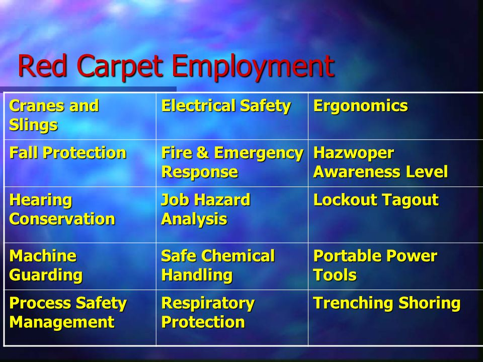 Cranes and Slings Electrical Safety Ergonomics Fall Protection Fire & Emergency Response Hazwoper Awareness Level Hearing Conservation Job Hazard Analysis Lockout Tagout Machine Guarding Safe Chemical Handling Portable Power Tools Process Safety Management Respiratory Protection Trenching Shoring Red Carpet Employment