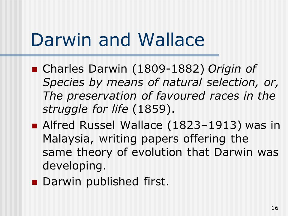 16 Darwin and Wallace Charles Darwin (1809-1882) Origin of Species by means of natural selection, or, The preservation of favoured races in the struggle for life (1859).