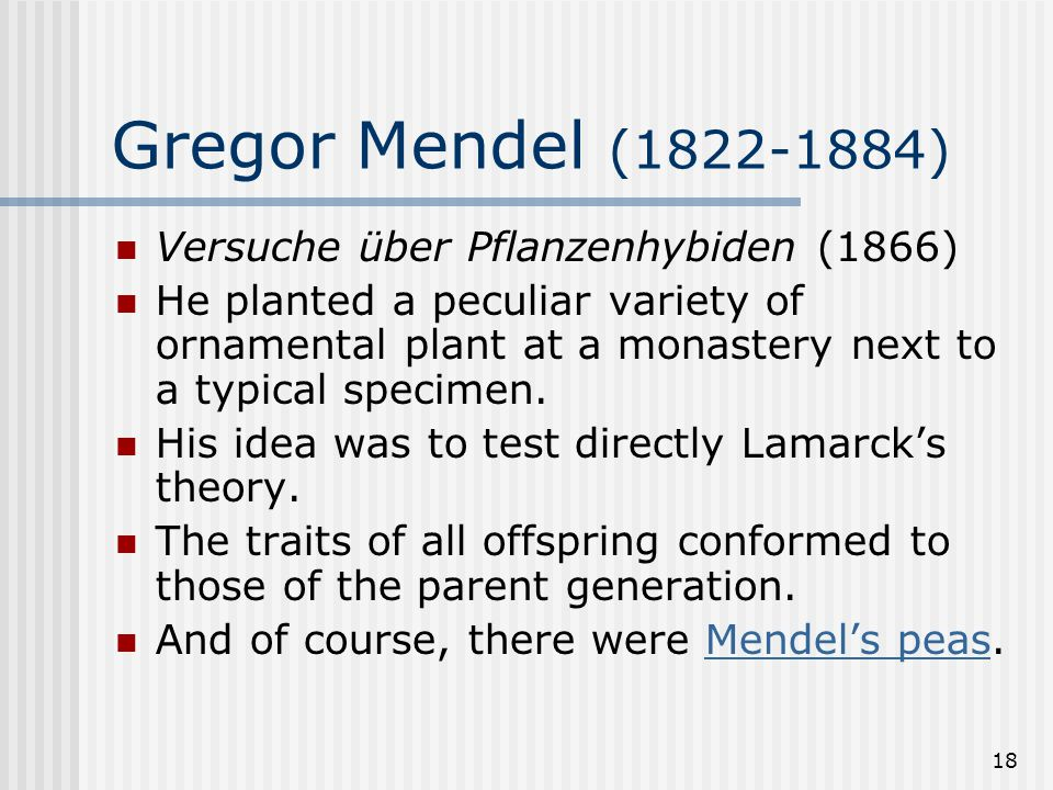 18 Gregor Mendel (1822-1884) Versuche über Pflanzenhybiden (1866) He planted a peculiar variety of ornamental plant at a monastery next to a typical s