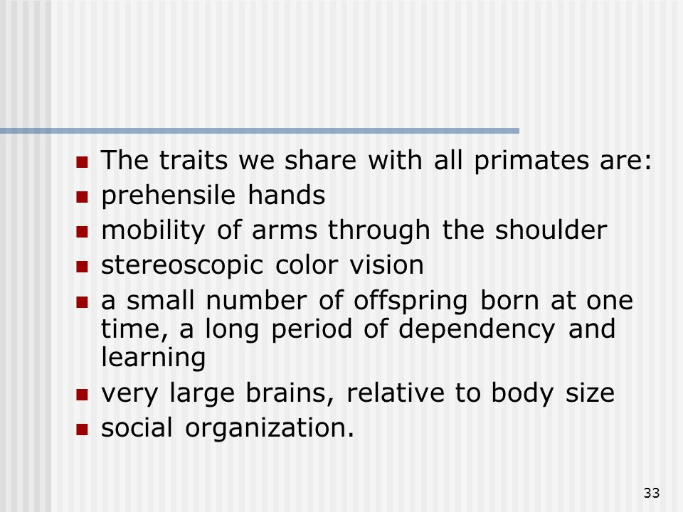 33 The traits we share with all primates are: prehensile hands mobility of arms through the shoulder stereoscopic color vision a small number of offsp