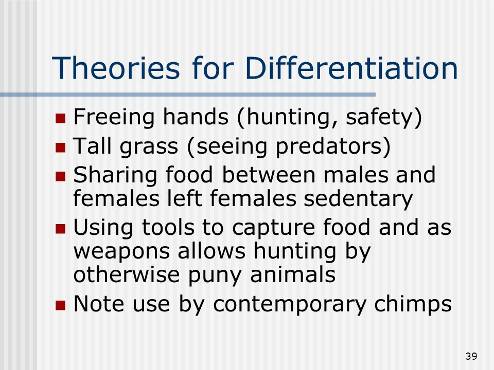 39 Theories for Differentiation Freeing hands (hunting, safety) Tall grass (seeing predators) Sharing food between males and females left females sede