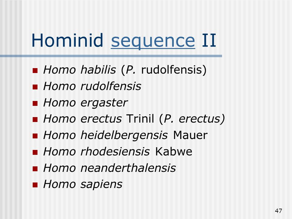 47 Hominid sequence IIsequence Homo habilis (P.