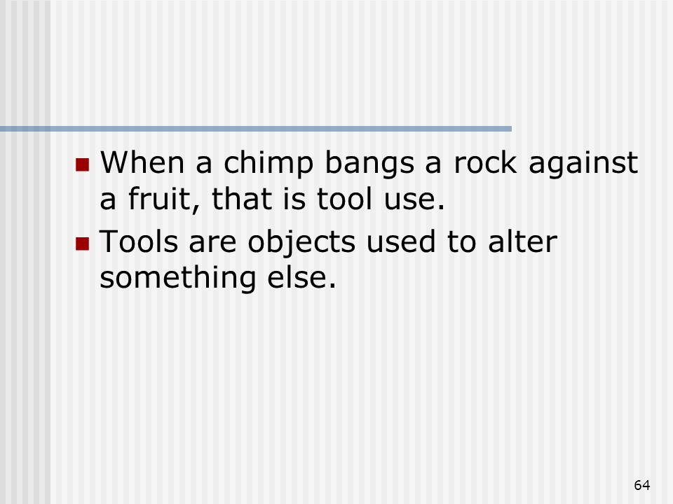64 When a chimp bangs a rock against a fruit, that is tool use.