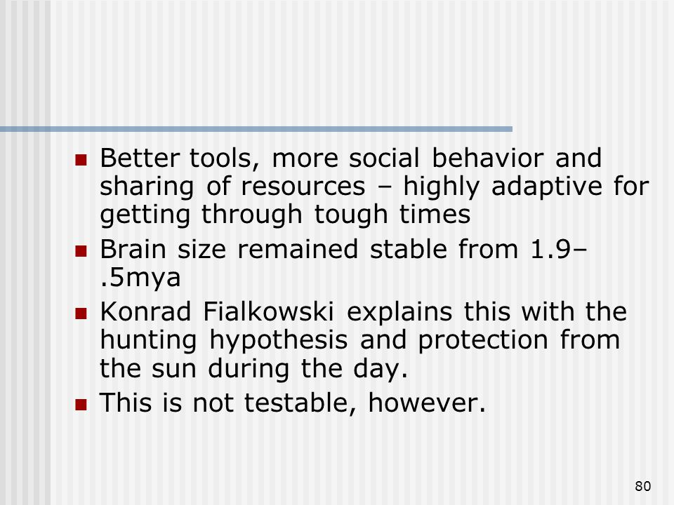 80 Better tools, more social behavior and sharing of resources – highly adaptive for getting through tough times Brain size remained stable from 1.9–.