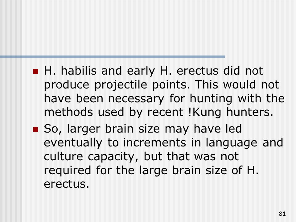 81 H. habilis and early H. erectus did not produce projectile points. This would not have been necessary for hunting with the methods used by recent !