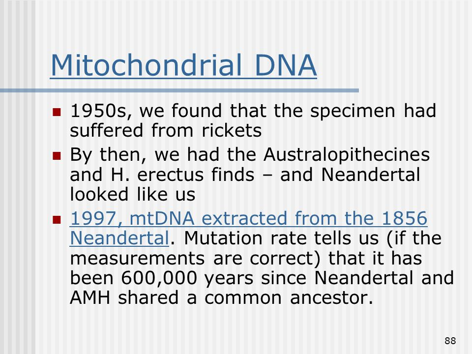 88 Mitochondrial DNA 1950s, we found that the specimen had suffered from rickets By then, we had the Australopithecines and H. erectus finds – and Nea