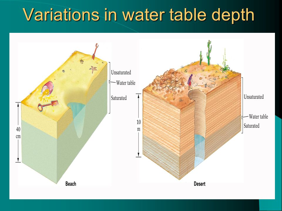 Variations in water table depth