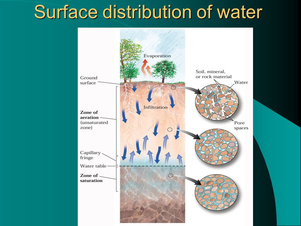 Surface distribution of water