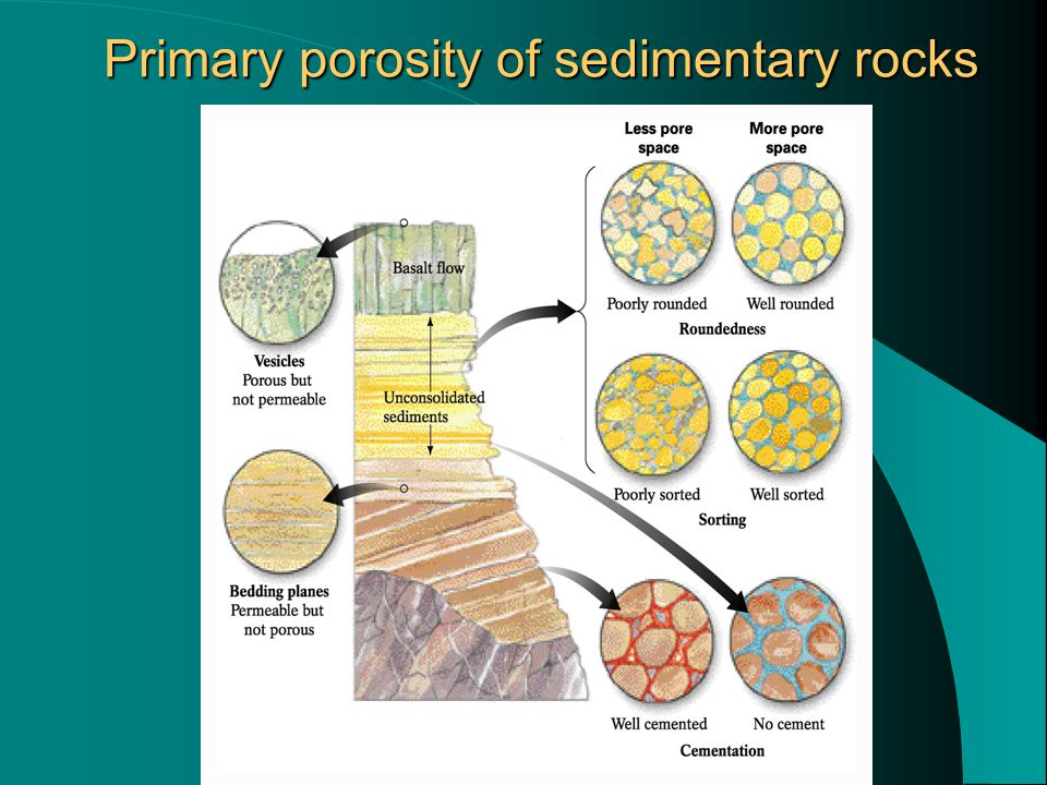 Primary porosity of sedimentary rocks