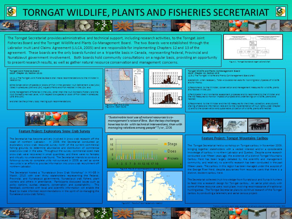 TORNGAT WILDLIFE, PLANTS AND FISHERIES SECRETARIAT The Torngat Secretariat provides administrative and technical support, including research activities, to the Torngat Joint Fisheries Board and the Torngat Wildlife and Plants Co-Management Board.
