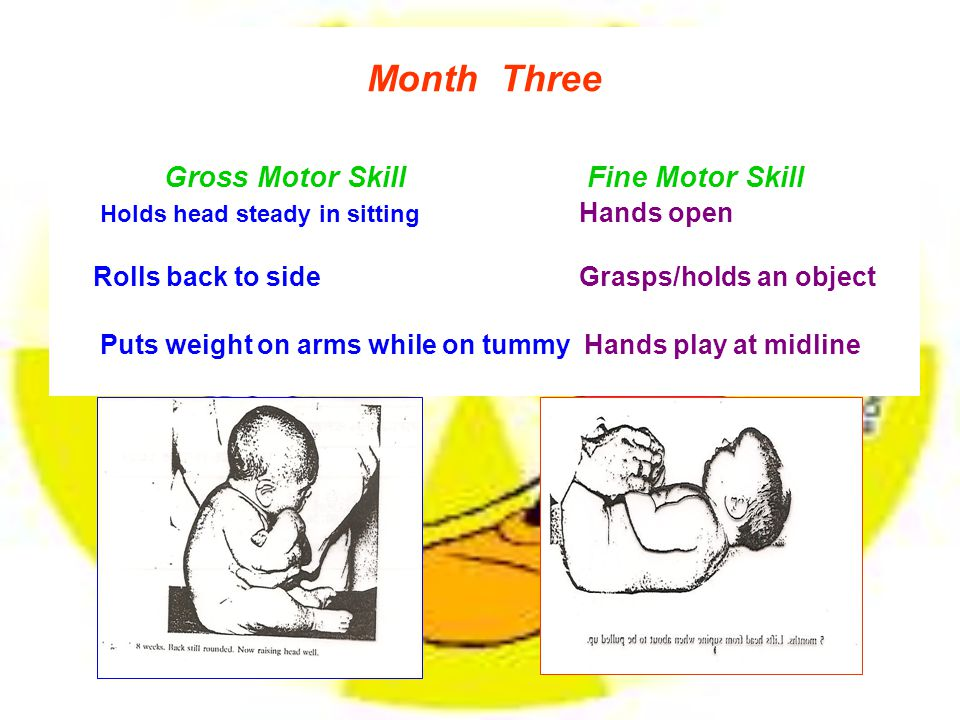 Month Three Gross Motor Skill Fine Motor Skill Holds head steady in sitting Hands open Rolls back to side Grasps/holds an object Puts weight on arms while on tummy Hands play at midline