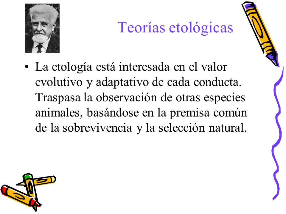 Teorías etológicas La etología está interesada en el valor evolutivo y adaptativo de cada conducta. Traspasa la observación de otras especies animales