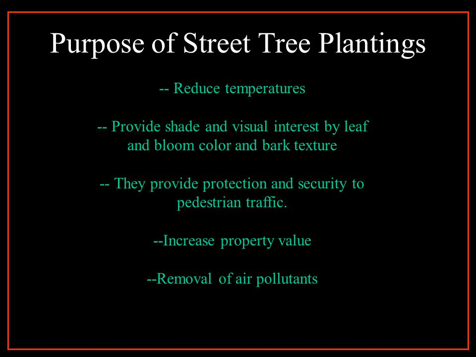 Purpose of Street Tree Plantings -- Reduce temperatures -- Provide shade and visual interest by leaf and bloom color and bark texture -- They provide protection and security to pedestrian traffic.