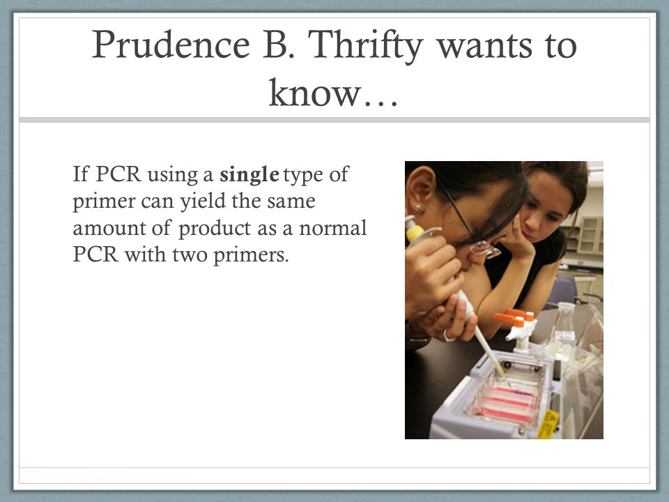 Prudence B.