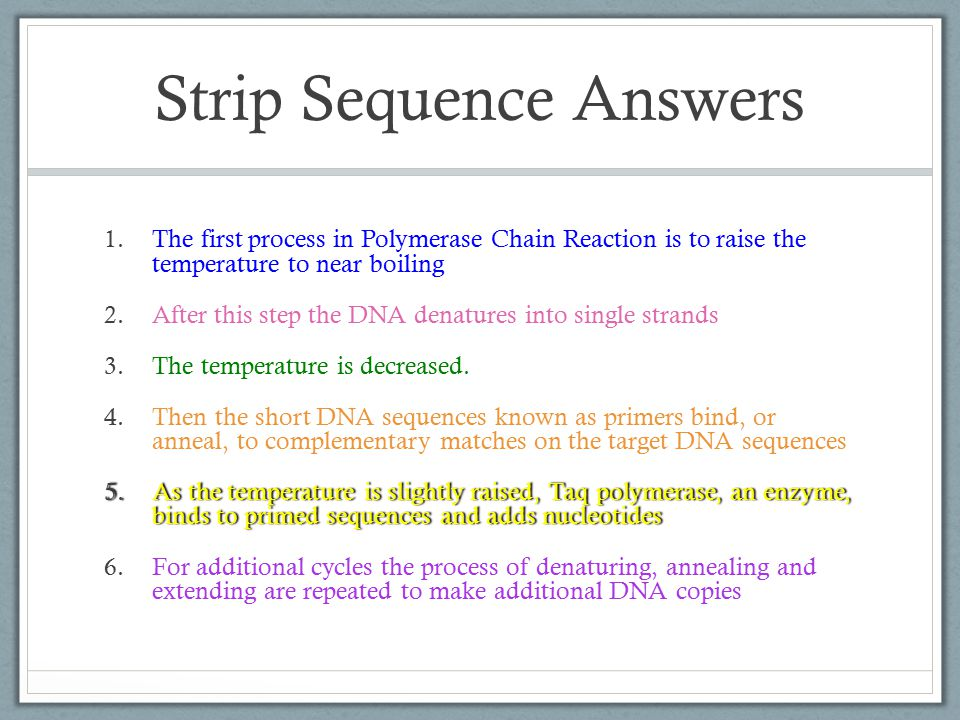 Strip Sequence Answers 1.The first process in Polymerase Chain Reaction is to raise the temperature to near boiling 2.After this step the DNA denatures into single strands 3.The temperature is decreased.