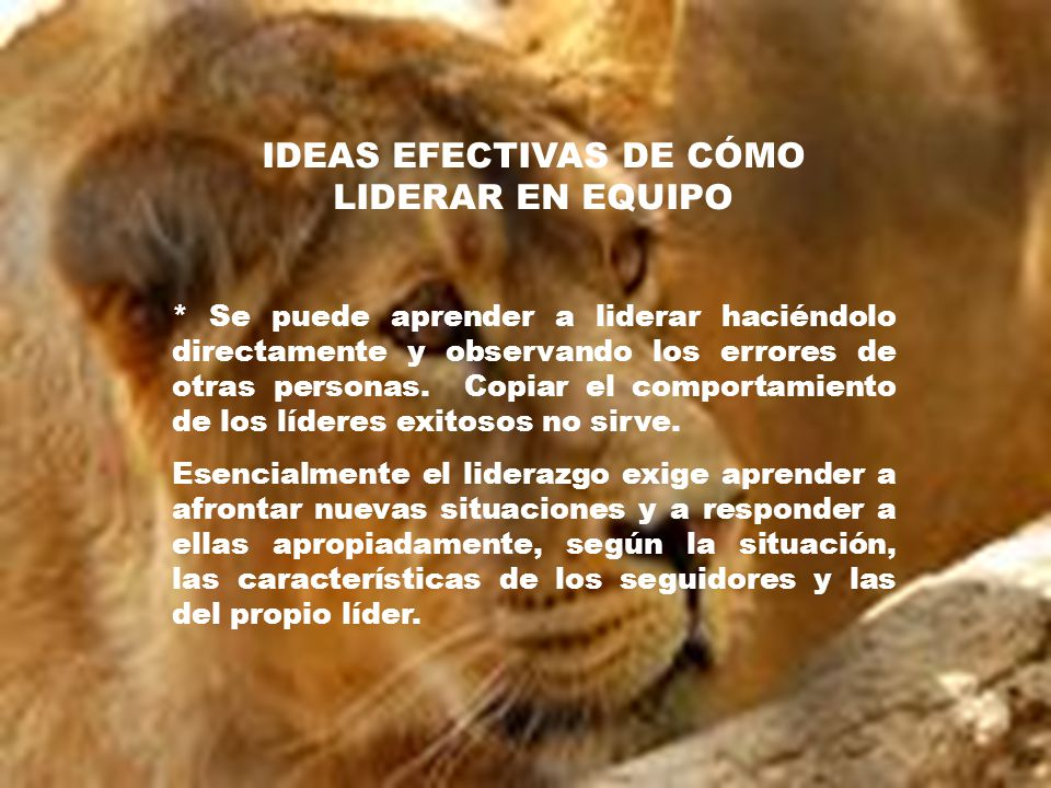 IDEAS EFECTIVAS DE CÓMO LIDERAR EN EQUIPO * Se puede aprender a liderar haciéndolo directamente y observando los errores de otras personas. Copiar el
