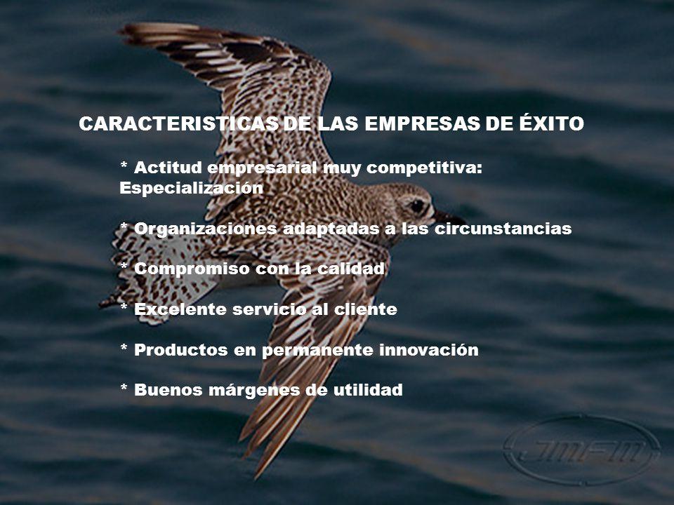 CARACTERISTICAS DE LAS EMPRESAS DE ÉXITO * Actitud empresarial muy competitiva: Especialización * Organizaciones adaptadas a las circunstancias * Comp