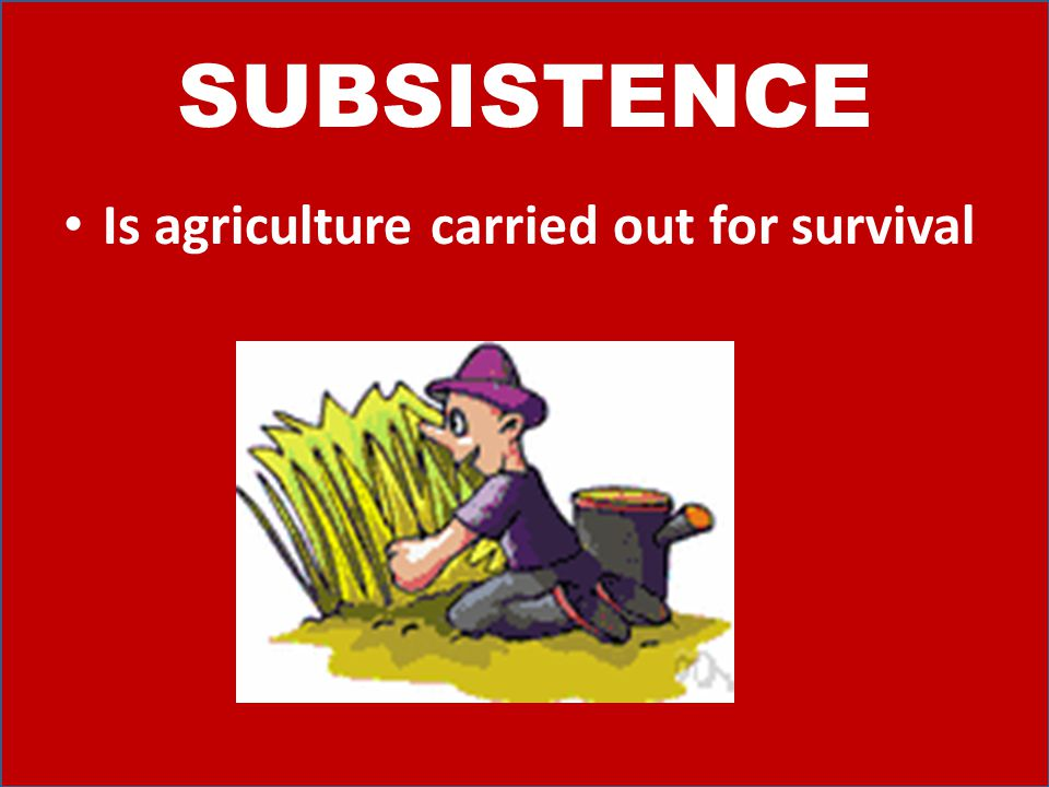 SUBSISTENCE Is agriculture carried out for survival